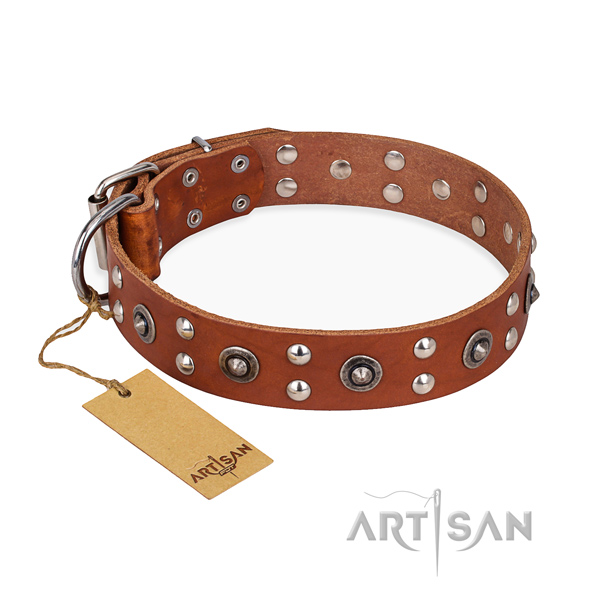 Walking fine quality dog collar with reliable traditional buckle