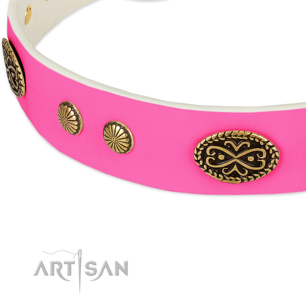Corrosion proof decorations on leather dog collar for your doggie