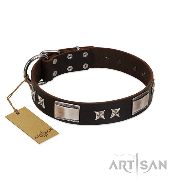 Awesome dog collar of full grain leather
