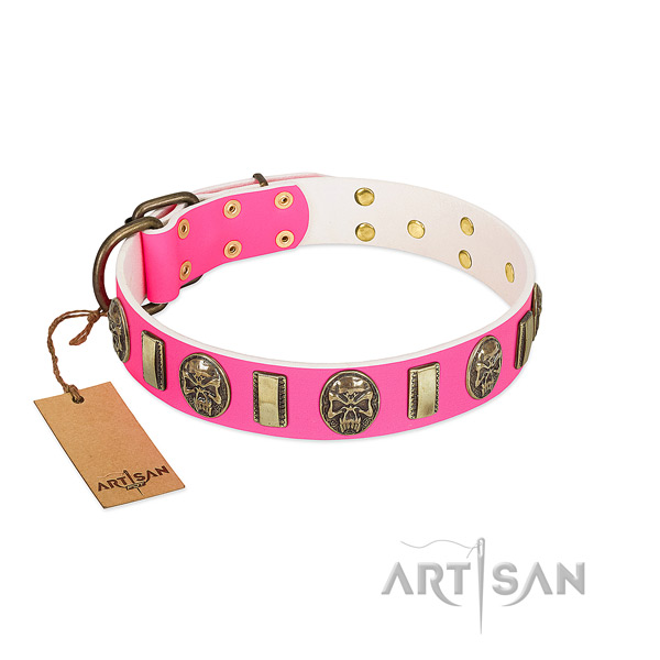 Reliable decorations on natural genuine leather dog collar for your canine