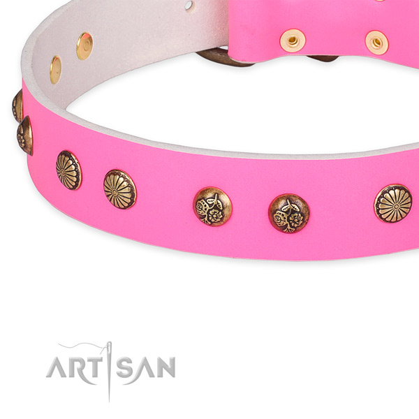 Full grain natural leather collar with strong hardware for your beautiful pet