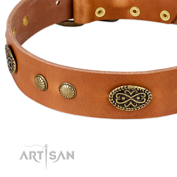 Rust-proof buckle on full grain natural leather dog collar for your pet