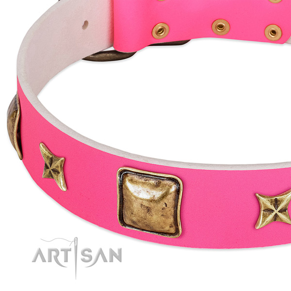 Full grain leather dog collar with amazing embellishments