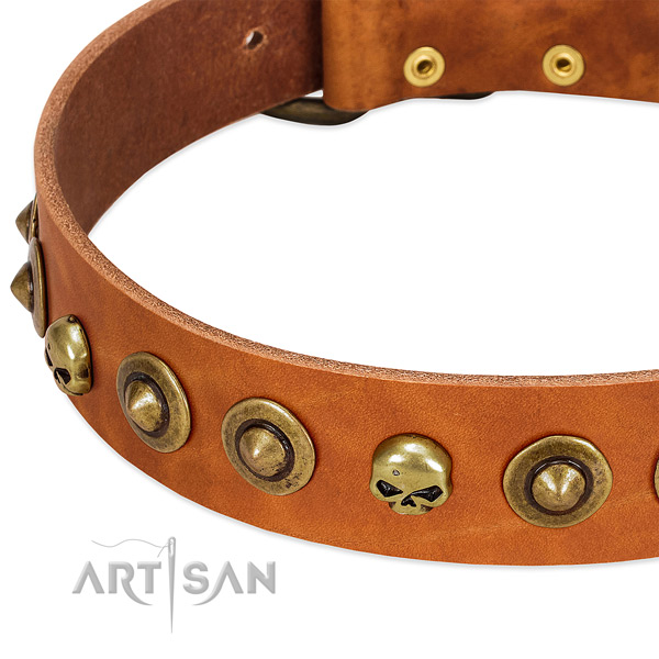 Fashionable studs on genuine leather collar for your doggie