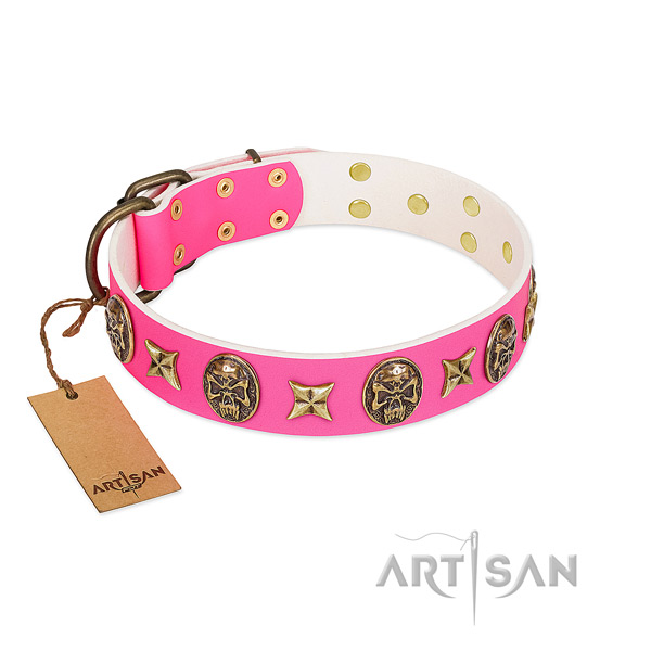 Full grain genuine leather dog collar with corrosion resistant embellishments