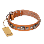 """Era of Future"" FDT Artisan Handcrafted Tan Leather Siberian Husky Collar with Decorations"