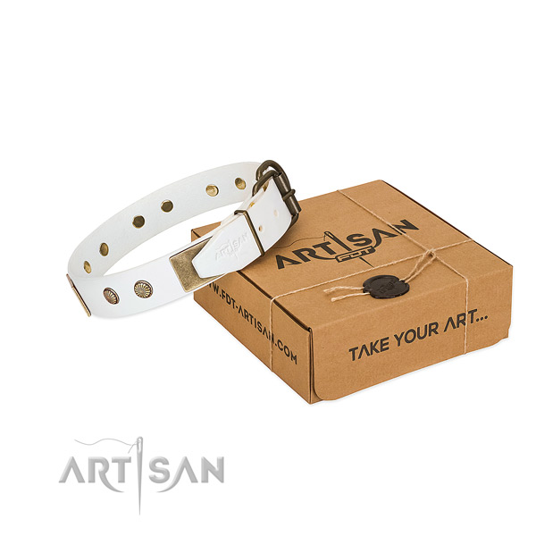 Rust resistant adornments on dog collar for comfy wearing