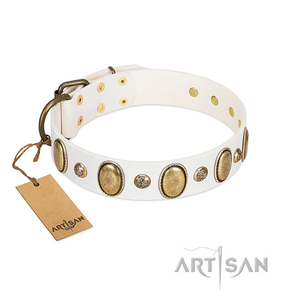 Leather dog collar of top notch material with top notch embellishments