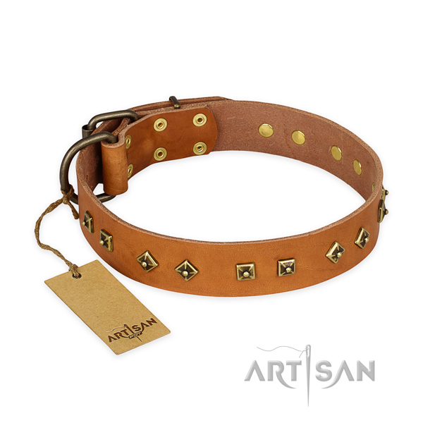 Comfortable full grain genuine leather dog collar with corrosion proof hardware