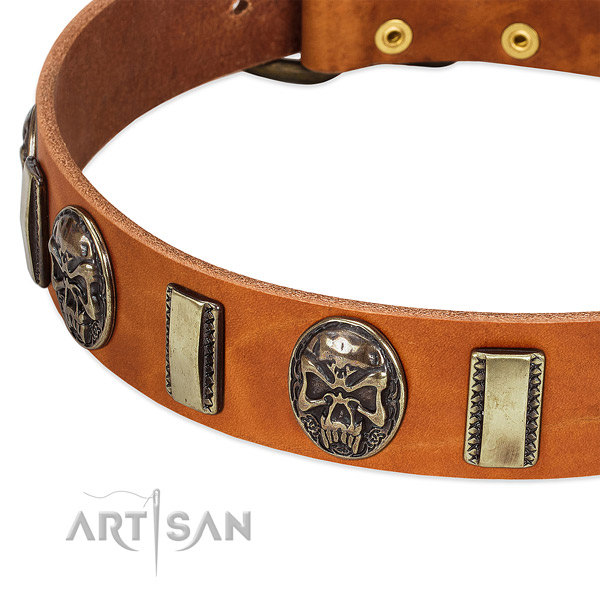 Reliable traditional buckle on genuine leather dog collar for your dog