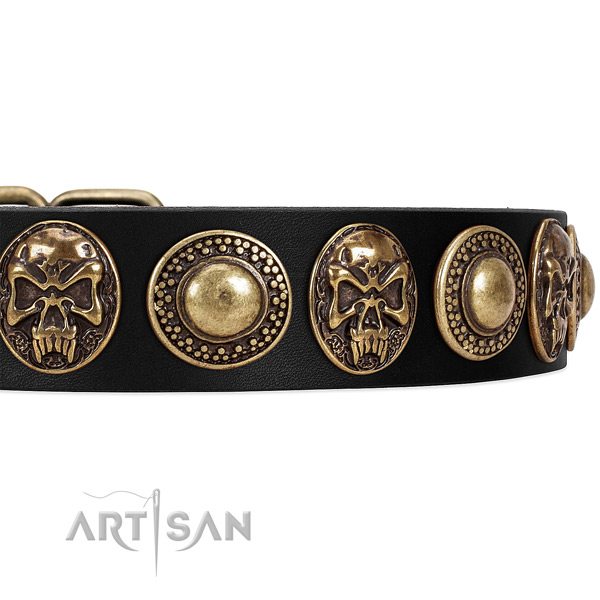 Leather dog collar with decorations for daily use