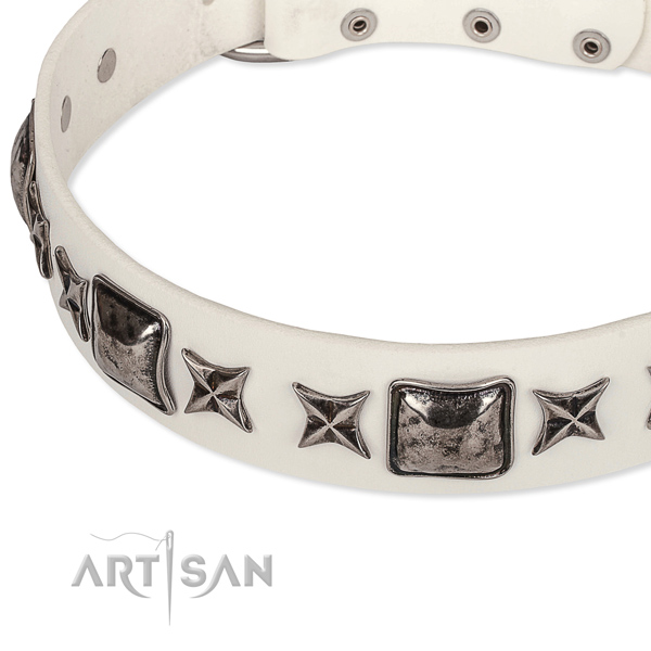 Daily walking studded dog collar of finest quality full grain natural leather
