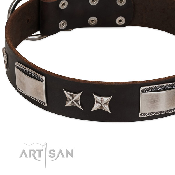Exquisite collar of full grain leather for your impressive doggie