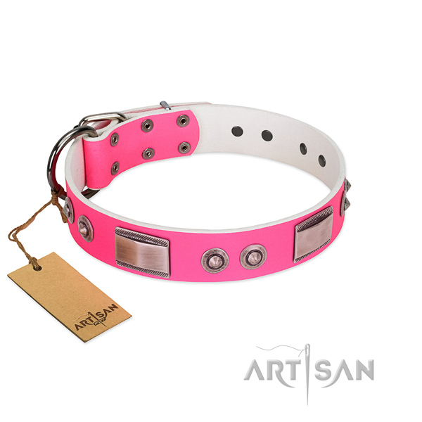 Unique dog collar of genuine leather with decorations