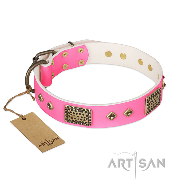 Easy to adjust genuine leather dog collar for basic training your pet