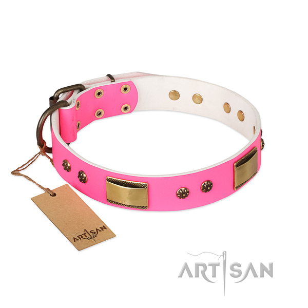 Exquisite leather collar for your dog