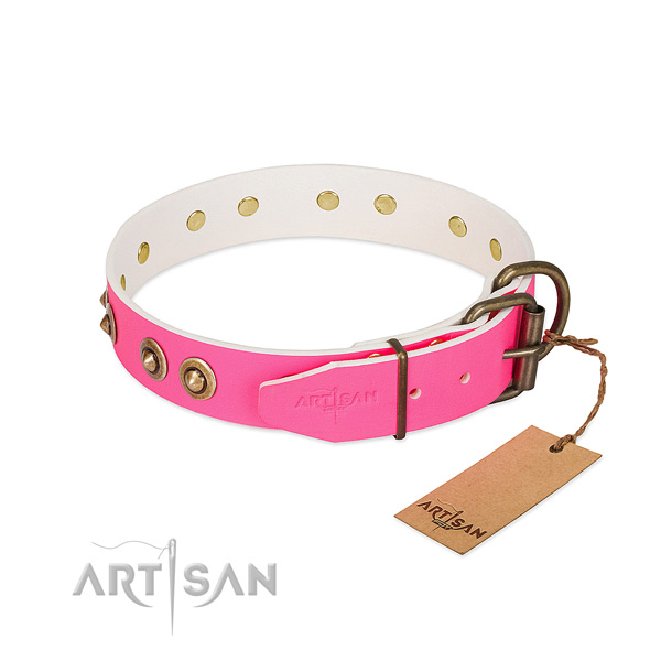 Genuine leather dog collar with strong buckle and embellishments