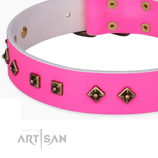 Extraordinary full grain leather collar for your lovely dog