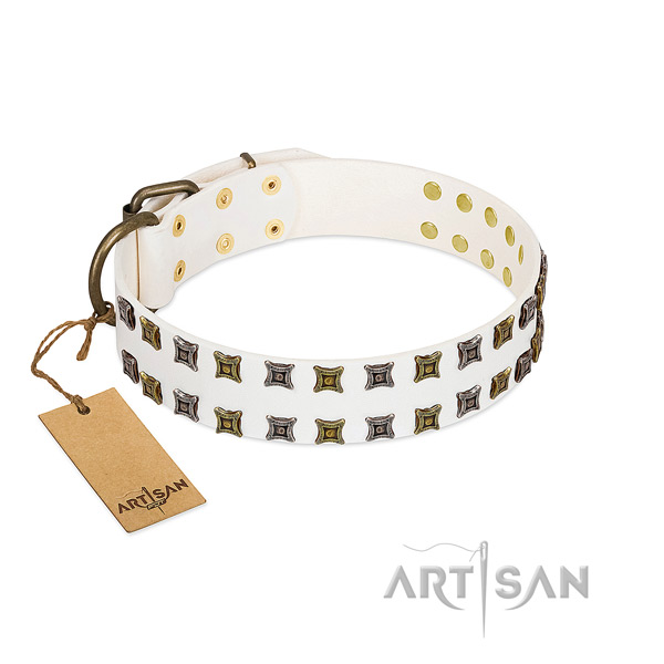 Reliable genuine leather dog collar with embellishments for your four-legged friend