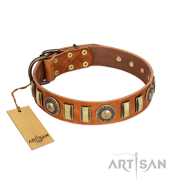 Fine quality natural leather dog collar with corrosion resistant buckle