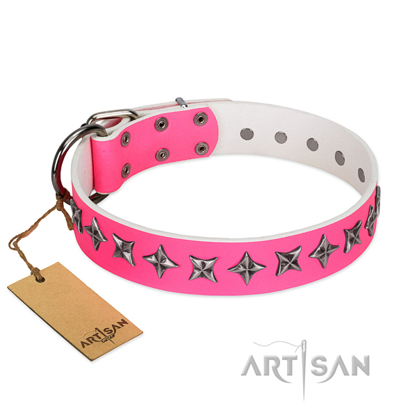 Fine quality leather dog collar with remarkable adornments