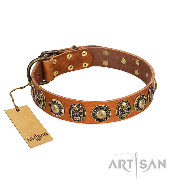 Adjustable full grain genuine leather dog collar for everyday walking your dog
