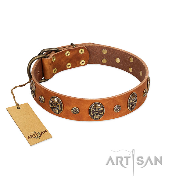 Top notch genuine leather collar for your four-legged friend