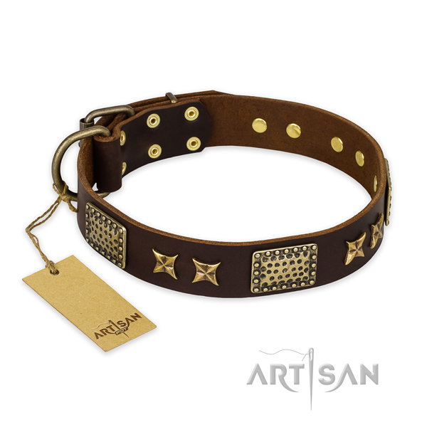 Impressive genuine leather dog collar with corrosion resistant fittings