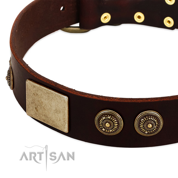 Strong embellishments on genuine leather dog collar for your pet