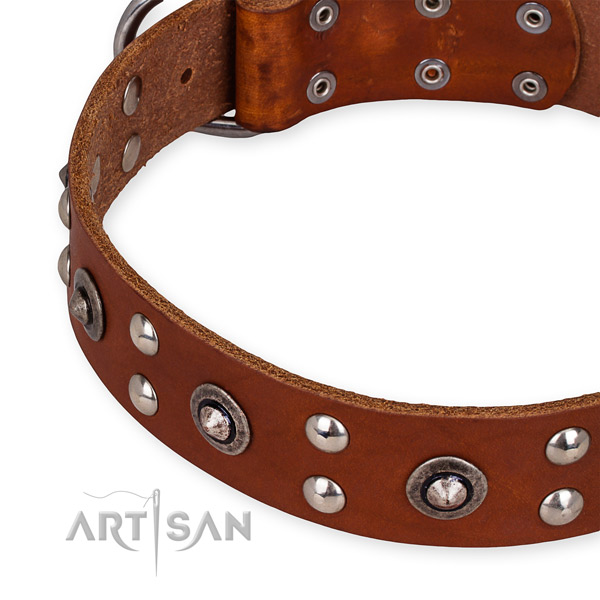 Full grain leather collar with corrosion proof buckle for your lovely four-legged friend