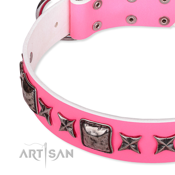 Daily walking studded dog collar of high quality full grain leather