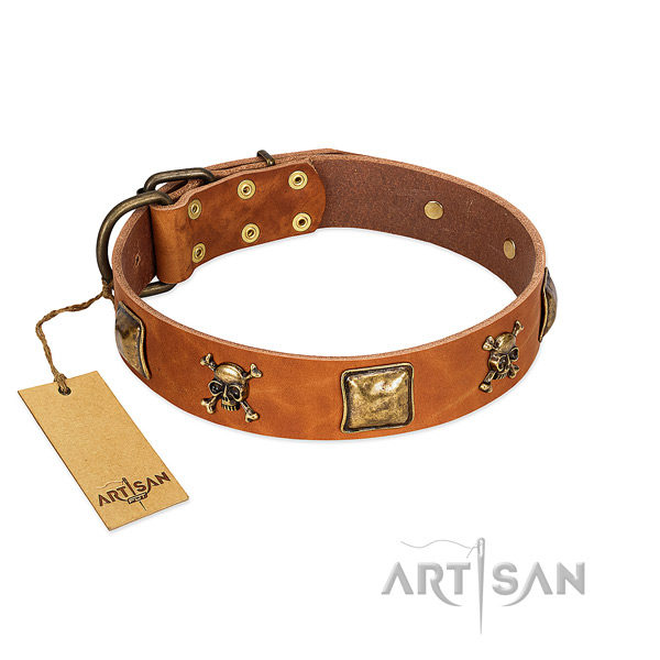 Designer full grain genuine leather dog collar with durable embellishments