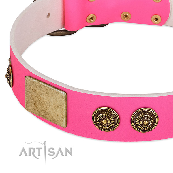 Best quality dog collar created for your stylish dog