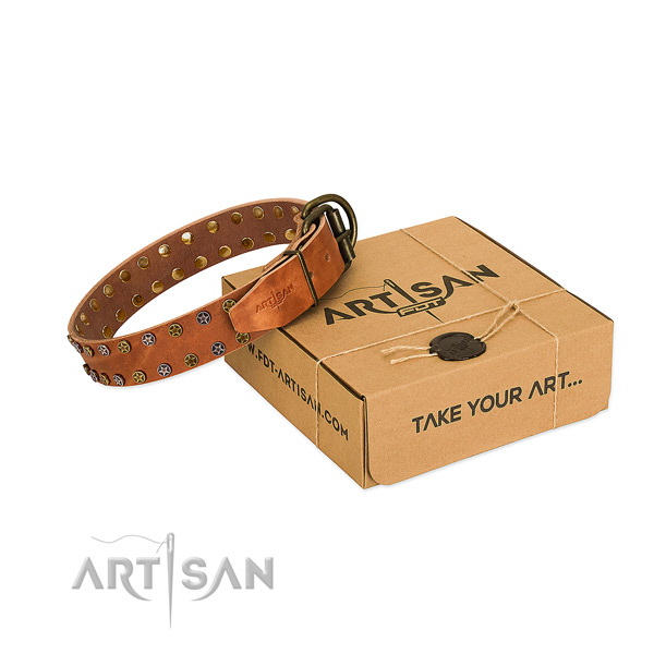 Easy wearing quality leather dog collar with adornments