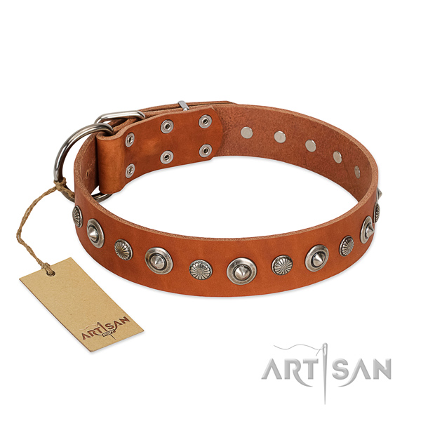 Top quality natural leather dog collar with stylish design adornments