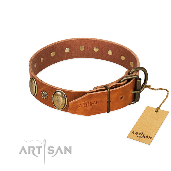 Easy wearing top rate full grain leather dog collar