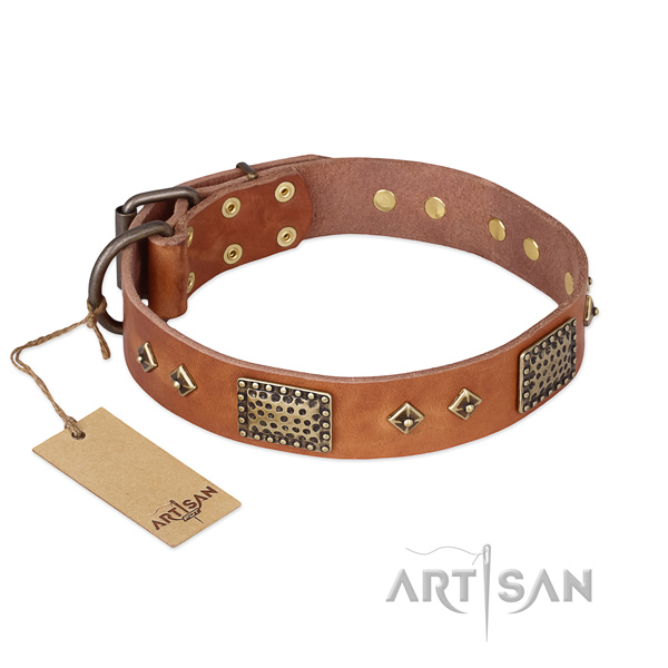 Easy wearing full grain natural leather dog collar for everyday walking
