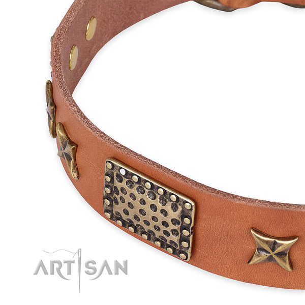 Natural genuine leather collar with rust resistant D-ring for your handsome doggie