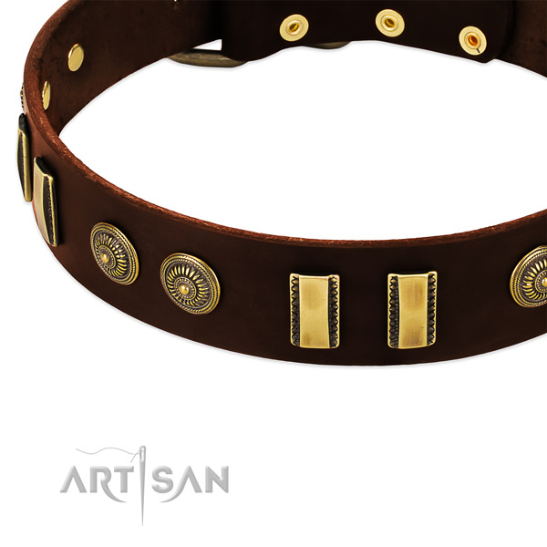 Corrosion proof traditional buckle on leather dog collar for your dog