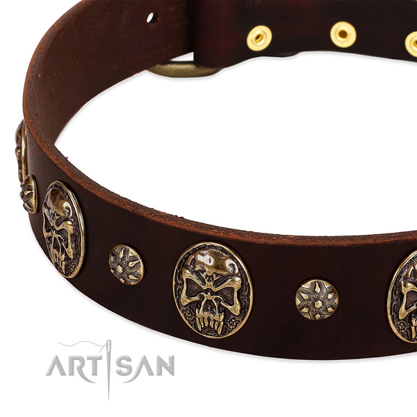Reliable embellishments on leather dog collar for your dog