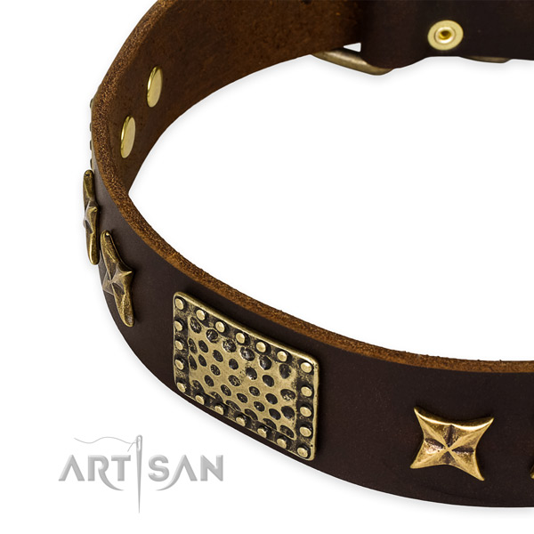 Full grain genuine leather collar with rust-proof D-ring for your impressive pet