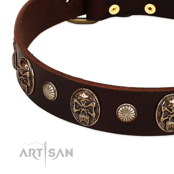 Natural genuine leather dog collar with adornments for everyday use