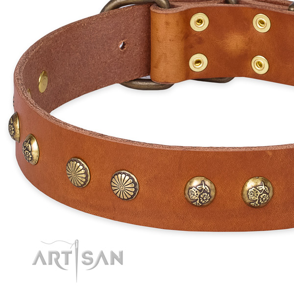 Full grain genuine leather collar with strong traditional buckle for your beautiful pet