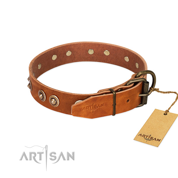 Reliable embellishments on full grain natural leather dog collar for your four-legged friend