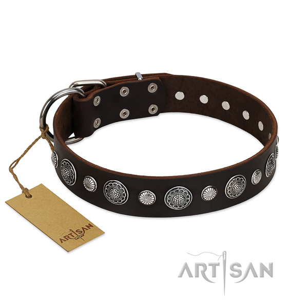 High quality full grain genuine leather dog collar with trendy adornments