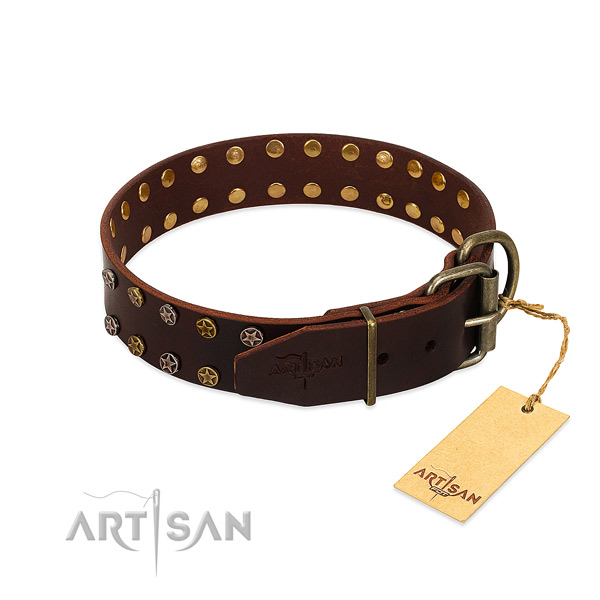 Everyday use full grain genuine leather dog collar with designer studs
