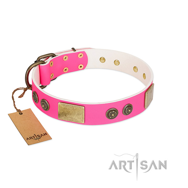 Unusual leather dog collar for easy wearing