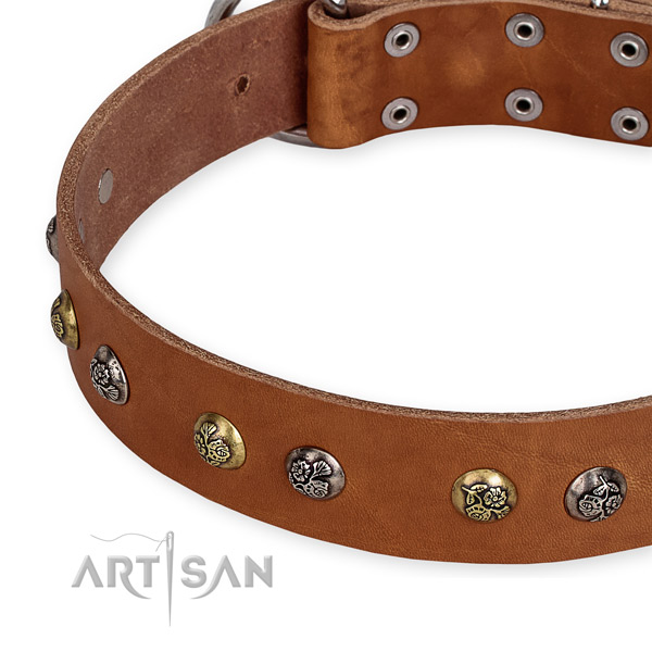 Genuine leather dog collar with top notch strong adornments