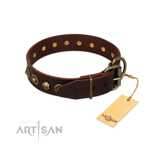 Full grain leather collar with fashionable embellishments for your canine
