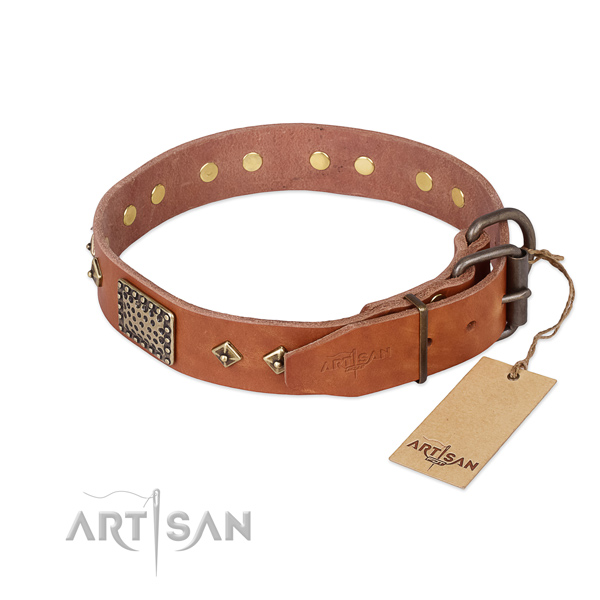 Full grain leather dog collar with reliable traditional buckle and embellishments